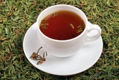 Una taza de té con la adición del adamsii del rododendro de la hierba imágenes de archivo libres de regalías