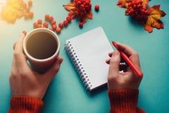 Una taza de té en hojas de otoño y ashberry, cuaderno y pluma fotografía de archivo