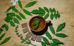 Una taza de té de la menta y de algunas runas Foto de archivo libre de regalías