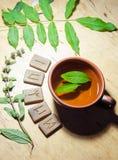 Una taza de té de la menta y de algunas runas Fotos de archivo libres de regalías