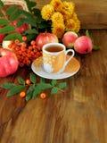 Una taza de té rodeada por las bayas, las manzanas y las hojas de serbal de la cosecha del otoño alrededor, Fotografía de archivo