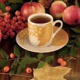 Una taza de té rodeada por las bayas, las manzanas y las hojas de serbal de la cosecha del otoño alrededor, Fotografía de archivo libre de regalías