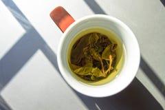 Una taza de té verde en lightining natural Imágenes de archivo libres de regalías