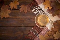Una taza de té y de hojas de arce en viejos tableros con la pintura descolorada, y tela escocesa a cuadros Imágenes de archivo libres de regalías