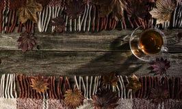 Una taza de té y de hojas de arce en viejos tableros con la pintura descolorada, y tela escocesa a cuadros Fotos de archivo