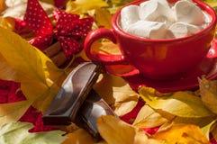 Una taza roja de cacao con las melcochas, varias paces de una barra de chocolate y canela en una superficie cubierta con las hoja Fotografía de archivo