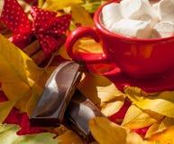 Una taza roja de cacao con las melcochas, varias paces de una barra de chocolate y palillos de canela en una superficie cubierta  Imágenes de archivo libres de regalías