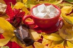 Una taza roja de cacao con las melcochas, varias paces de una barra de chocolate y palillos de canela en una superficie cubierta  Foto de archivo