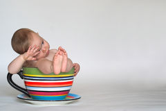 Una tazza del bambino Fotografie Stock Libere da Diritti
