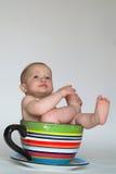 Una tazza del bambino Immagini Stock Libere da Diritti