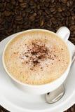 Una tazza del caffè del cappuccino Fotografia Stock Libera da Diritti