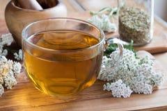 Una tazza del tè del millefoglio con millefoglio fresco immagini stock
