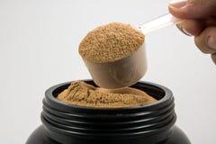 Una tazza della polvere del proteina del siero per la persona di guadagni o di dieta del muscolo è Immagini Stock Libere da Diritti
