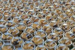 Una tazza dello spuntino del cereale Immagini Stock Libere da Diritti
