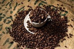 Una tazza di caffè macchiato in pieno dei chicchi di caffè, circondato da ancora di più Fotografie Stock Libere da Diritti