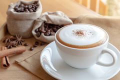 Una tazza di cappuccino e delle erbe sul tovagliolo fotografia stock libera da diritti
