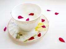 Una tazza di latte Immagini Stock