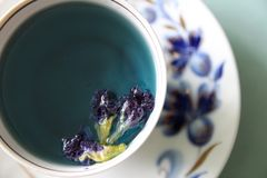 Una tazza di tè blu Immagine Stock