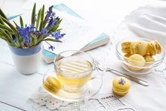 Una tazza di tè caldo, del bucaneve dei fiori, dello sketchbook e dei maccheroni blu del limone su un fondo leggero Fotografia Stock