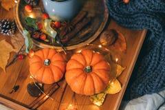 Una tazza di tè Composizione e zucca in autunno di comodità immagine stock libera da diritti