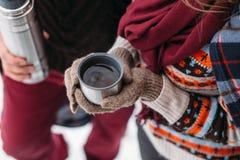 Una tazza di tè da un termos sull'inverno fa un picnic nel legno Fotografie Stock Libere da Diritti
