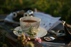 Una tazza di tè, opera-vetri della perla nel tramonto si accende fotografia stock