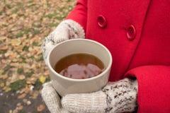 Una tazza di tè riscalda le mani del ` s della ragazza in guanti Fotografia Stock