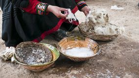 Una tessitura della lana dell'alpaga dei demsontrates della donna di Quechuan Immagine Stock