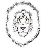 Una testa del leone Immagini Stock Libere da Diritti