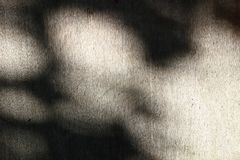 Una textura de la madera contrachapada vieja con un diverso tracery de la sombra 1 imagen de archivo libre de regalías