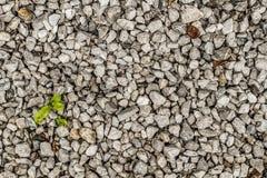 Una textura inconsútil de la roca en color gris imagenes de archivo