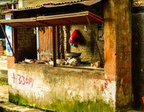 Una tienda del ` s del carnicero en Nepal con las cabras dirige en el contador foto de archivo libre de regalías