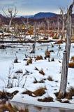 Una tierra Nevado Imagen de archivo libre de regalías