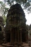 Una torre en templo de TA Prohm en Angkor cerca de Siem Reap en Camboya foto de archivo