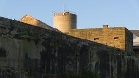 Una torre y una pared con los pájaros almacen de metraje de vídeo