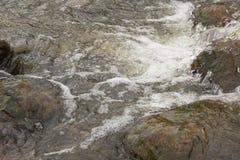 Una torrente montano fresca e rocciosa fotografie stock libere da diritti