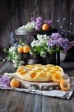 Una torta con le albicocche fresche fotografia stock libera da diritti