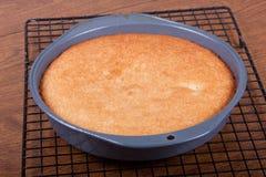 Una torta cotta Immagine Stock Libera da Diritti
