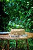 Una torta de miel en el jardín imagen de archivo