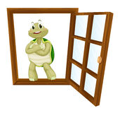 Una tortuga en ventana Foto de archivo libre de regalías