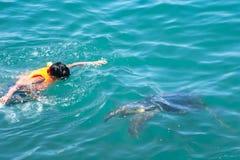 Una tortuga y un hombre en el Océano Pacífico fotografía de archivo libre de regalías