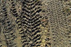 Una traccia da vari protettori della gomma di inverno su una strada sporca Fotografia Stock Libera da Diritti