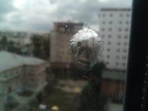 Una traccia dalla pallottola sul vetro Fotografia Stock Libera da Diritti