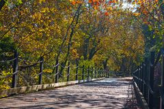 Una traccia della bici e del pedone lungo il fiume Potomac a Arlington, VA, U.S.A. immagine stock libera da diritti