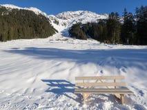 Una traccia in Klosters Immagini Stock Libere da Diritti