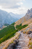 Una traccia in montagne polacche Fotografie Stock