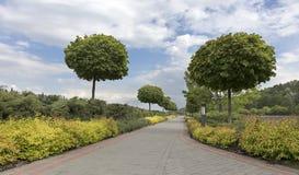 Una trayectoria caminada pavimentada enmarcada con los arbustos y los árboles acortados en un parque hermoso Imagenes de archivo