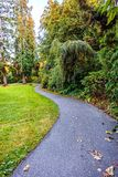 Una trayectoria de la bobina en un parque con los árboles, arbustos, hierba verde Imagen de archivo