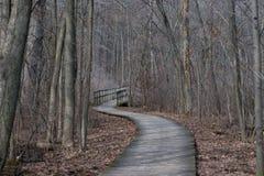 Una trayectoria de madera que eso lleva a un puente en el bosque fotografía de archivo
