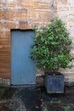 Una trayectoria del jardín que lleva a una puerta en un jardín emparedado imagenes de archivo